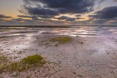 Παλιρροιακή λάσπη έλους επίπεδη Στοκ Φωτογραφίες