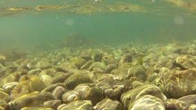 Παλιρροιακός άντεξε φιλμ μικρού μήκους