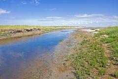 Παλιρροιακός κολπίσκος στοκ φωτογραφίες με δικαίωμα ελεύθερης χρήσης