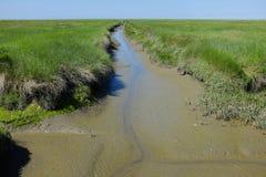 Παλιρροιακός κολπίσκος στοκ φωτογραφία με δικαίωμα ελεύθερης χρήσης