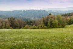Πεδία και δάσος στοκ φωτογραφία με δικαίωμα ελεύθερης χρήσης