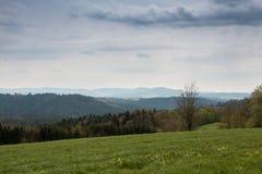 Πεδία και δάσος στοκ εικόνες με δικαίωμα ελεύθερης χρήσης
