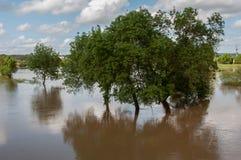 πεδία που πλημμυρίζουν στοκ εικόνα