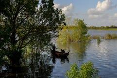 πεδία που πλημμυρίζουν στοκ φωτογραφία