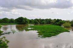 πεδία που πλημμυρίζουν στοκ φωτογραφία με δικαίωμα ελεύθερης χρήσης