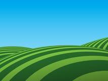 πεδία πράσινα Στοκ εικόνες με δικαίωμα ελεύθερης χρήσης