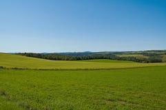 πεδία πράσινα Στοκ Εικόνες