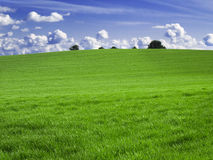 πεδία πράσινα Στοκ Φωτογραφίες