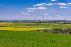 Πεδία στην Πολωνία στοκ φωτογραφίες με δικαίωμα ελεύθερης χρήσης
