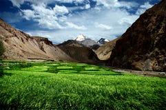 πεδία himalayan στοκ εικόνα