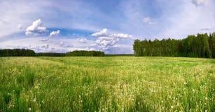 πεδίο ηλιόλουστο Στοκ φωτογραφία με δικαίωμα ελεύθερης χρήσης