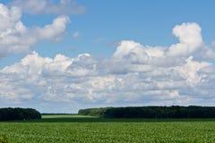 Πεδίο και σύννεφα στοκ εικόνα με δικαίωμα ελεύθερης χρήσης