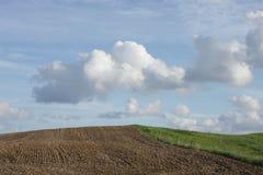 πεδίο πράσινο πέρα από τον ο&up Στοκ Εικόνα