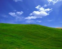 πεδίο πράσινο στοκ φωτογραφίες