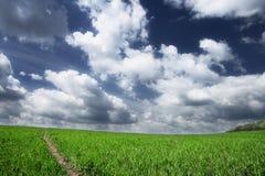 πεδίο σύννεφων στοκ εικόνα