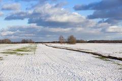 Πεδίο το χειμώνα Στοκ εικόνες με δικαίωμα ελεύθερης χρήσης