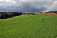 πεδίο Στοκ εικόνα με δικαίωμα ελεύθερης χρήσης