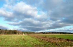 πεδίο Στοκ φωτογραφίες με δικαίωμα ελεύθερης χρήσης