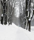 πεζοδρόμιο πάρκων στοκ φωτογραφίες