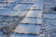 Πεζοδρόμιο στο χιόνι, χιονώδες πρωί στοκ φωτογραφία με δικαίωμα ελεύθερης χρήσης