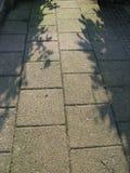 πεζοδρόμιο Στοκ Φωτογραφία