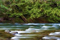 Πεζοπορία κατά μήκος της ΑΜ ποταμών σολομών Εθνικό δρυμός κουκουλών Στοκ φωτογραφίες με δικαίωμα ελεύθερης χρήσης