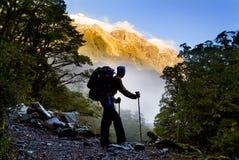 πεζοπορία Νέα Ζηλανδία στοκ φωτογραφία με δικαίωμα ελεύθερης χρήσης