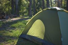 Πεζοπορία στο δάσος το καλοκαίρι, υγιής στρατοπέδευση Στοκ εικόνα με δικαίωμα ελεύθερης χρήσης