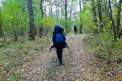 Πεζοπορία στο δάσος φθινοπώρου Στοκ Εικόνες