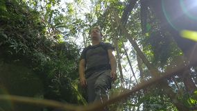Πεζοπορία σόλο να περπατήσει υπαίθρια την περιπέτεια στη ζούγκλα τροπικών δασών απόθεμα βίντεο
