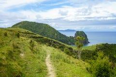 Πεζοπορία της παράκτιας διάβασης πεζών Coromandel, Νέα Ζηλανδία 61 Στοκ Εικόνες