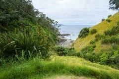 Πεζοπορία της παράκτιας διάβασης πεζών Coromandel, Νέα Ζηλανδία 63 Στοκ φωτογραφία με δικαίωμα ελεύθερης χρήσης