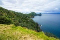 Πεζοπορία της παράκτιας διάβασης πεζών Coromandel, Νέα Ζηλανδία 65 Στοκ Εικόνα