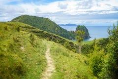 Πεζοπορία της παράκτιας διάβασης πεζών Coromandel, Νέα Ζηλανδία 62 Στοκ Εικόνες