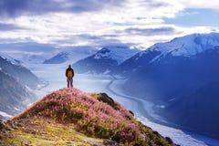 Πεζοπορώ στην Αλάσκα στοκ εικόνες