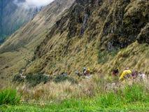 Πεζοπορώ στην αρχαία στρωμένη ίχνος πορεία Inca σε Machu Picchu Περού Κανένας άνθρωπος Στοκ Φωτογραφίες