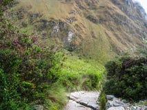 Πεζοπορώ στην αρχαία στρωμένη ίχνος πορεία Inca σε Machu Picchu Περού Κανένας άνθρωπος Στοκ Εικόνες