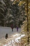 Πεζοπορώ του πρώτου χειμώνα Στοκ Εικόνες