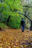 Πεζοπορώ το φθινόπωρο Στοκ Φωτογραφίες