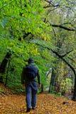 Πεζοπορώ το φθινόπωρο Στοκ φωτογραφία με δικαίωμα ελεύθερης χρήσης