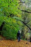 Πεζοπορώ το φθινόπωρο Στοκ Φωτογραφία
