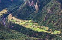 πεζούλια ρυζιού του Νεπάλ πεδίων Στοκ εικόνες με δικαίωμα ελεύθερης χρήσης