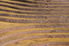 Πεζούλια στο Moray σύνθετο κοντινό Maras, Περού στοκ φωτογραφία με δικαίωμα ελεύθερης χρήσης