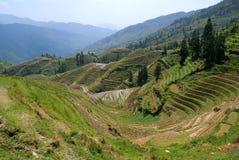 πεζούλια zhuang στοκ φωτογραφία με δικαίωμα ελεύθερης χρήσης