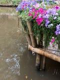 Πεζούλι μπαμπού με τη σειρά λουλουδιών στοκ εικόνες με δικαίωμα ελεύθερης χρήσης
