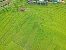 Πεζούλι ρυζιού στην εθνική επαρχία Chiang Mai περιοχής λουριών Chom πάρκων Doi Inthanon, Ταϊλάνδη κατά την άποψη ματιών πουλιών Στοκ Φωτογραφία