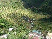 Πεζούλι ρυζιού Batad σε Banaue, Ifugao, Φιλιππίνες στοκ εικόνες με δικαίωμα ελεύθερης χρήσης