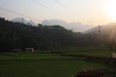 Πεζούλια ορυζώνα ρυζιού από το ηλιοβασίλεμα στο βόρειο Βιετνάμ Στοκ Φωτογραφίες