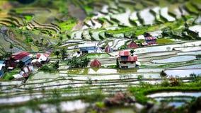 Πεζούλια ρυζιού και του χωριού σπίτια Banaue, Φιλιππίνες Κλίση shif Στοκ Φωτογραφίες