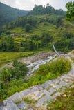 Πεζούλια ρυζιού στην περιοχή συντήρησης Annapurna, Νεπάλ Στοκ φωτογραφία με δικαίωμα ελεύθερης χρήσης